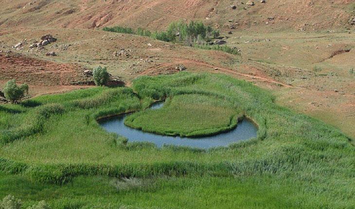 چمن متحرک یا چملی گول -تکاب -آذربایجان غریی