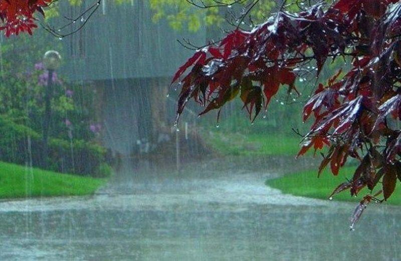 خبرنگاران 21.3 میلیمتر بارندگی در تنگچنار مهریز ثبت شد