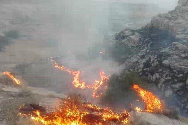 توضیحات استاندار تهران در خصوص آتش سوزی های اخیر تهران