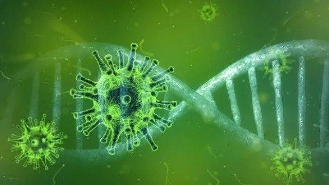 کشف جهشی در ویروس کرونا که احتمال سرایت آن را افزایش می دهد