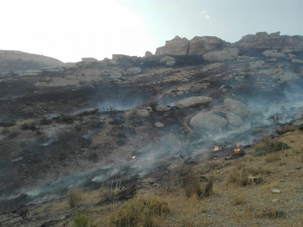 خبرنگاران آتش سوزی در مراتع تکاب در آذربایجان غربی مهار شد