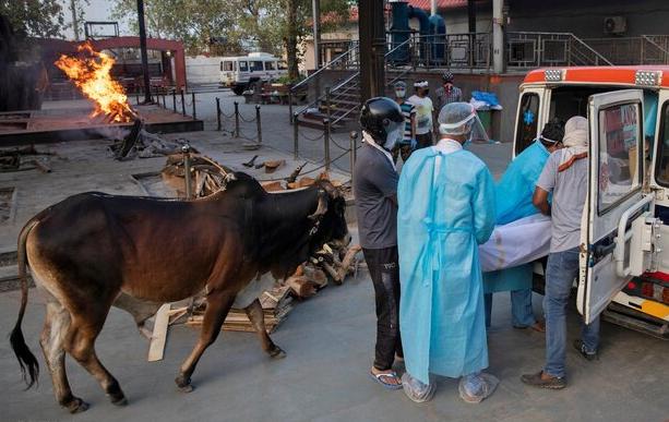 هند دومین کشوری که بیشترین مبتلایان به کرونا را دارد