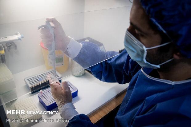 تصویب 300 طرح تحقیقاتی کرونا در دانشگاه علوم پزشکی شهیدبهشتی