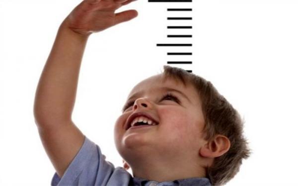 غذایی که قد کودک شما را بلند می نماید