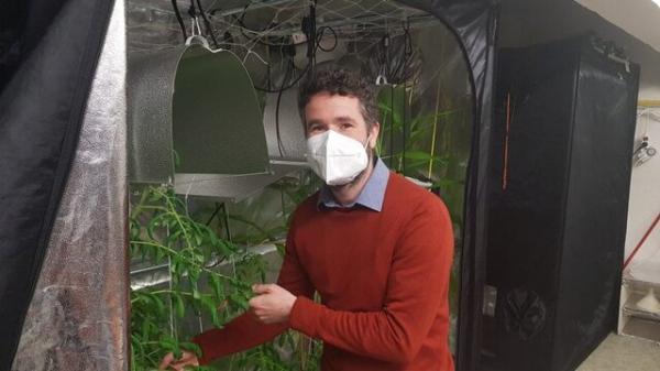 نابودی آفات گیاهان با روبات پیشرفته